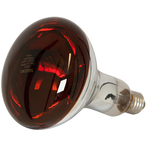 Ruby 250w Relector Heat Lamp With ES (E27) Screw Fitting (90242512)