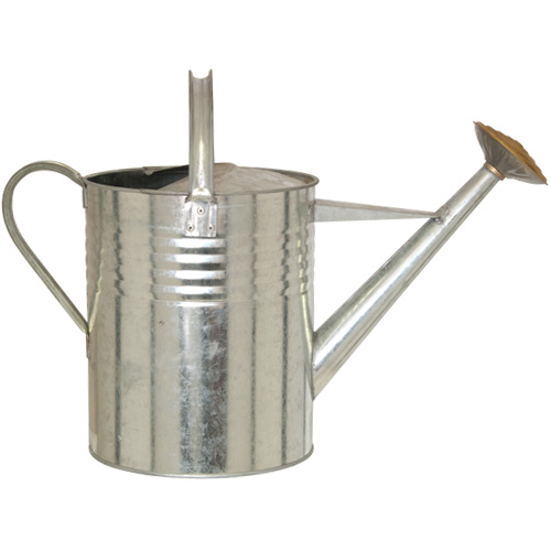 Parasene Galvanised 2 Gallon Watering Can