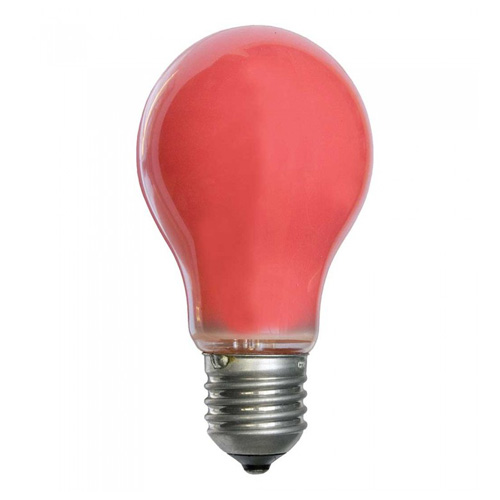 25W 240V ES Coloured Light Bulb - Red