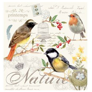 Stow Green Paper Napkins - Songbird - Pack of 20 x 3 ply